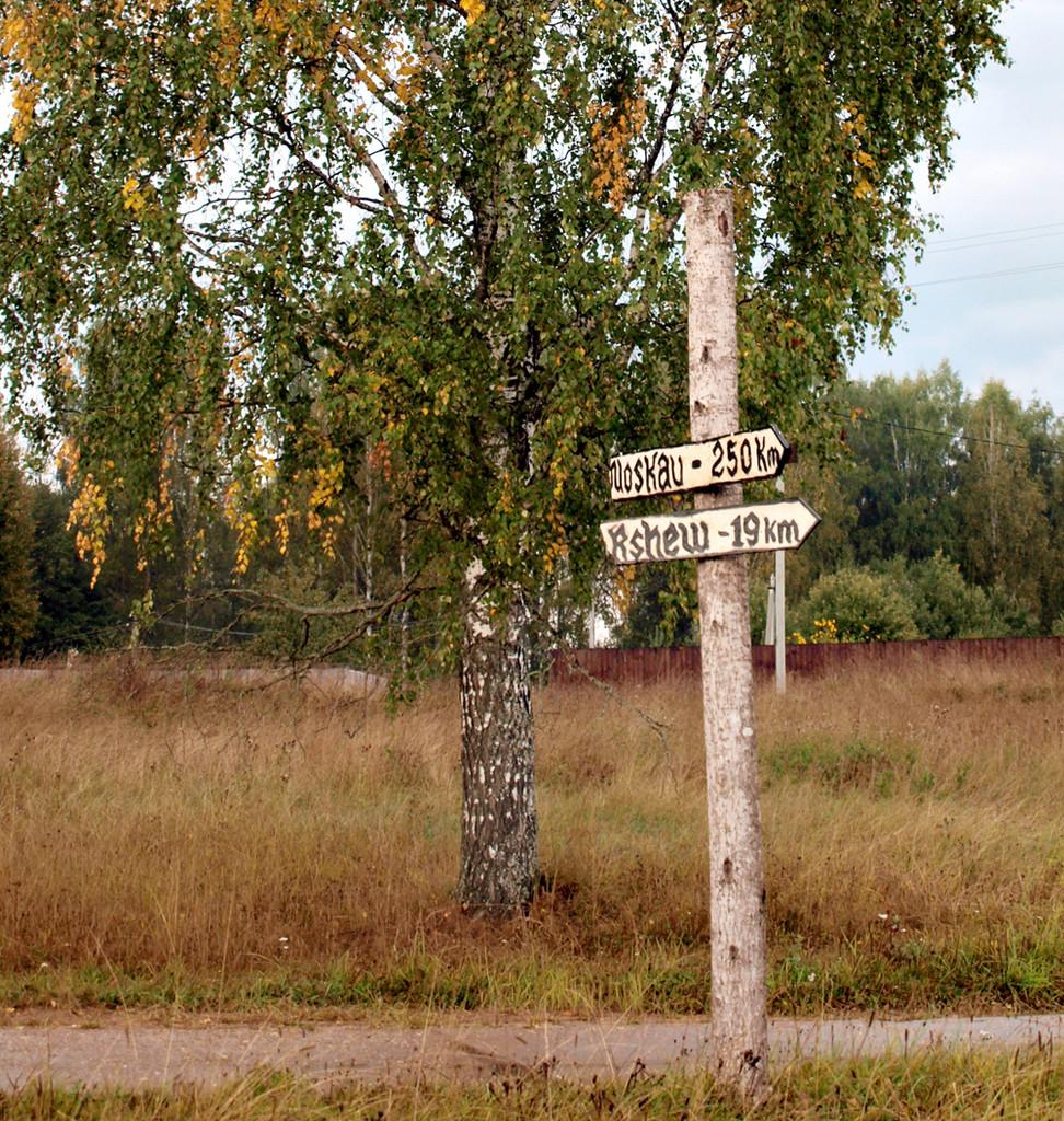 Ржевская битва, Кокошкино